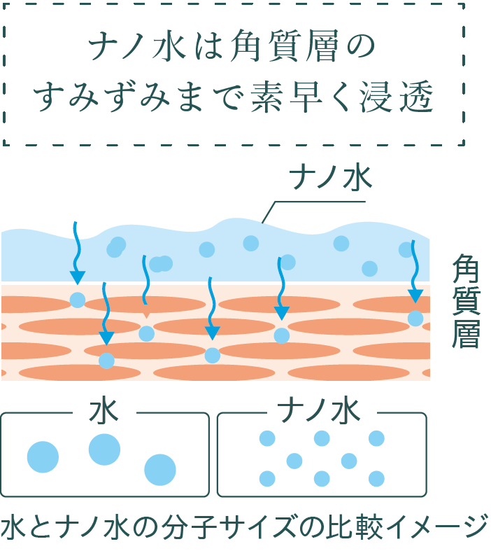 ナノ水は角質層のすみずみまで素早く浸透