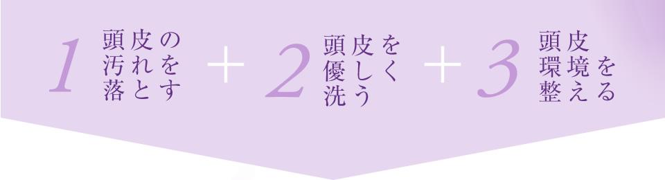 1. 頭皮の汚れを落とす + 2. 頭皮を優しく洗う + 3. 頭皮環境を整える